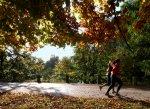 Sport, bieganie w parku